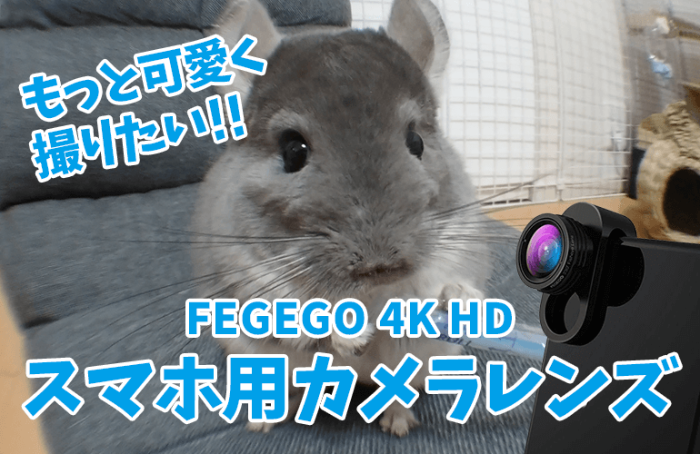 ペットをもっと可愛く撮りたい!!「FEGEGO 4K HD スマホ用カメラレンズ3in1(魚眼、広角、マクロ)」を購入!
