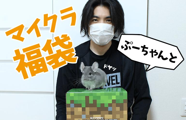 【2019年福袋開封】チンチラのぷーちゃんと一緒にマインクラフトの福袋を開封してみた!