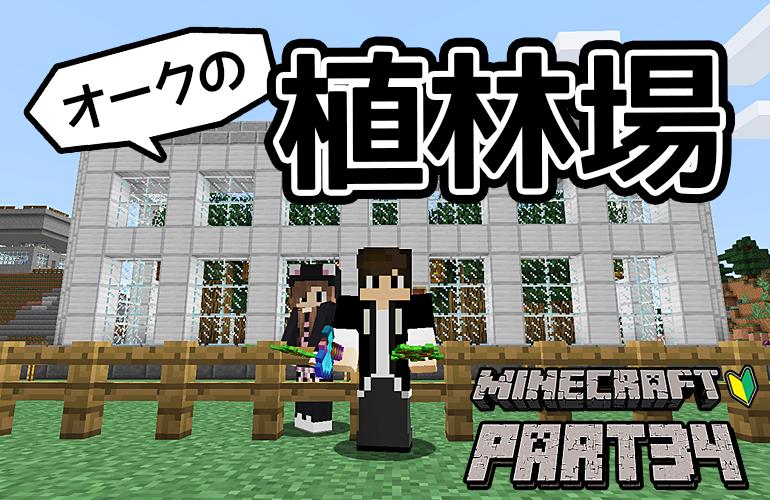 【マインクラフト】植林場を作ろう(オーク編)!!ちーのマイクラ実況!Part34