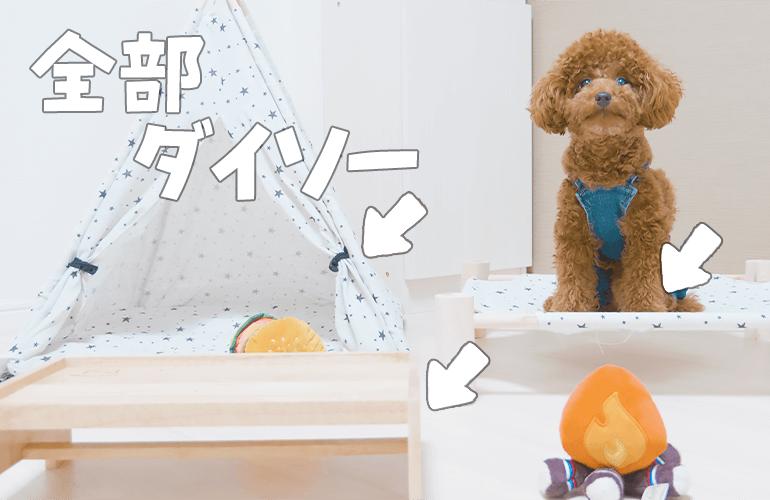 【100均】ダイソーのペットグッズが凄すぎる!【トイプードル】