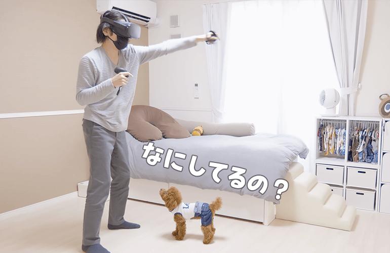 犬の前でVRゲームしたら反応が面白すぎたw【トイプードル】