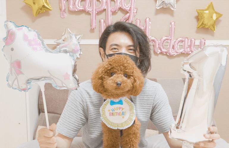 【祝1歳】トイプードルのぽこたんのお誕生日を一緒にお祝い