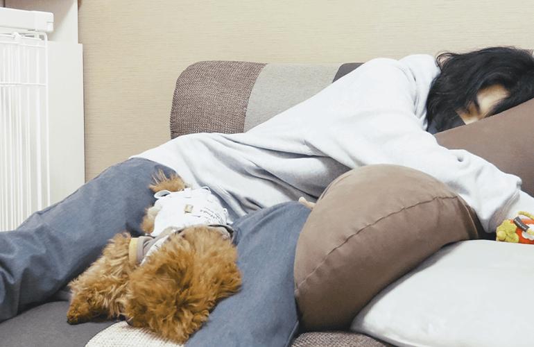 子犬とお昼寝してみたら全く同じ寝相だったw