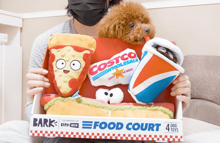 コストコの犬用おもちゃが最高すぎた【トイプードル】