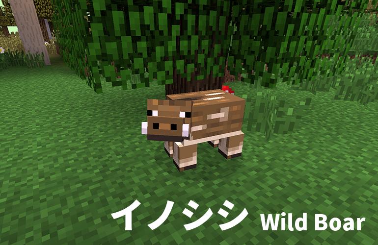 イノシシ(Wild Boar)